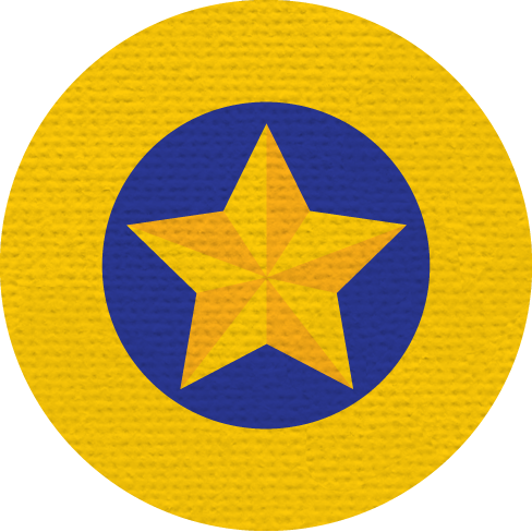 GOLD STAR MERIT BADGE