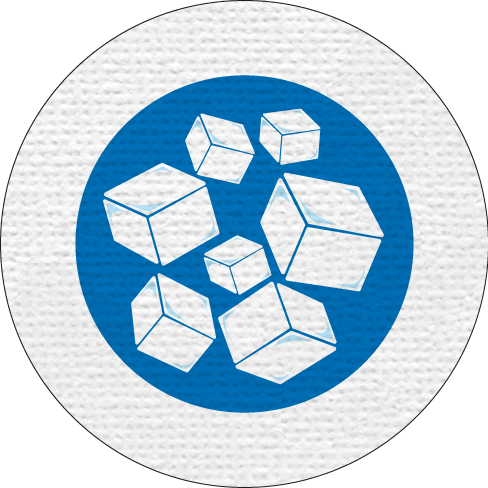 ICE MERIT BADGE